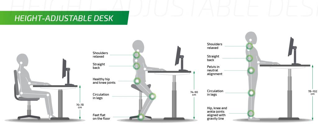 Height adjustable Desk Ergonomics